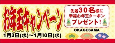 お年玉キャンペーン_01
