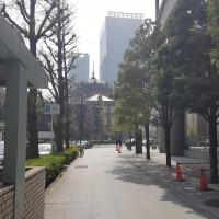 image_1524065760