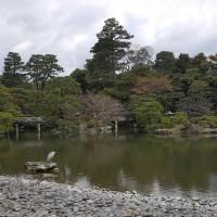 image_1554813461